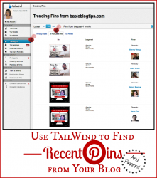Use TailWind To Find Recent Pins And Pinners
