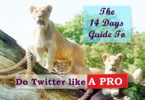Improve Your Twitter Skills in 14 Days